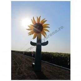 floarea-soarelui-caussade-1