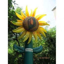 floarea-soarelui-caussade-2